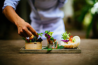 A chef puts the final touches on a dish of salads and spring rolls in southern Vietnam.