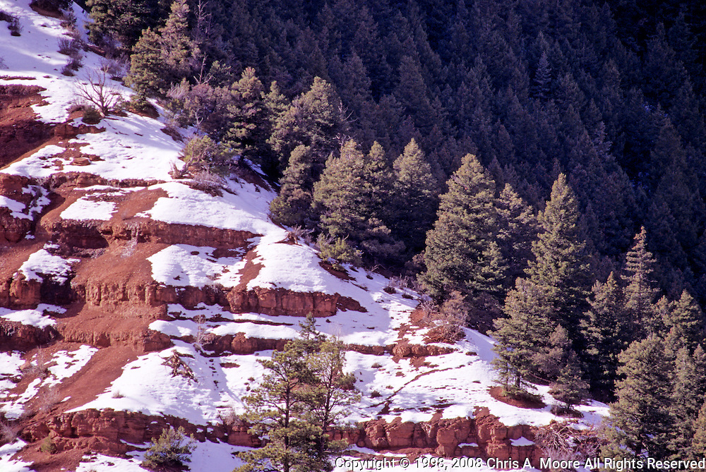 A diagonal of red rocks, snow and evergreens near Telluride, Colorado, January 1998.