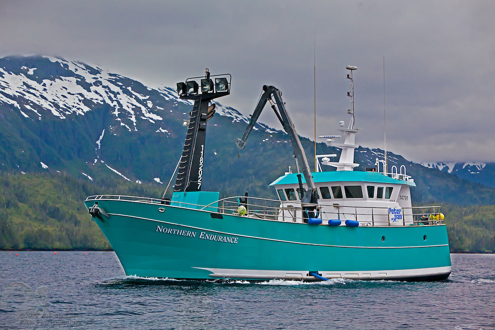 Northern endurance peterpan 7675 bob martinson photography for Alaska fishing boats