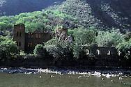 Ruins of an hacienda testifying of the past splendor of Batopilas  ..  ..Une hacienda en ruine temoigne du passe fabuleux de Batopilas ..R00040/12    L0007345  /  R00040  /  P0003439