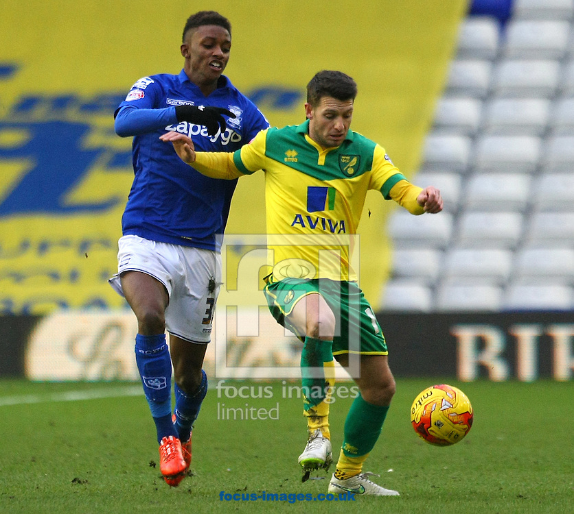 Wes Hoolahan of Norwich and Demarai Gray of Birmingham during the Sky Bet Championship match at St Andrews, Birmingham<br /> Picture by Paul Chesterton/Focus Images Ltd +44 7904 640267<br /> 31/01/2015