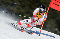02.02.2011, Nici Hang, Lachtal, AUT, FIS Junioren Riesentorlauf, Men, im Bild // Daniel Hemetsberger (AUT) // during the men giant slalom race at the FIS Junior races in Lachtal, EXPA Pictures © 2011, PhotoCredit: EXPA/ S. Zangrando