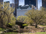 Gapstow Bridge in Central Park with a view of The Plaza Hotel