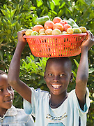Some of David and Joyce's children with freshly picked tomatoes. Their farm has grown from nothing, in the days when they could only afford one meal a day. Thanks to the training provided by Send a Cow, they are now able to feed their family of 16 children and their farm is fast becoming a profitable business. Their eldest son Ouran James has just completed a diploma in Agriculture.