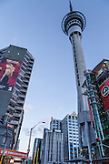 Downtown Auckland image with Sky Tower