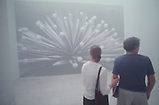 VENICE, ITALY..June 1999..48th Biennale of Venice.Fog at the Belgium Pavillion..(Photo by Heimo Aga)