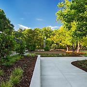 Image of UC Davis Pool Rec Area 2019