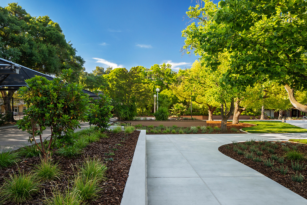 Image of UC Davis Pool Rec Area 2019