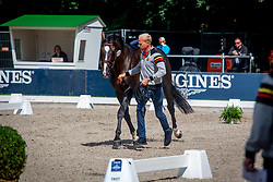 Guery Jerome, BEL, Quel Homme de Hus<br /> European Championship Jumpîng<br /> Rotterdam 2019<br /> © Hippo Foto - Dirk Caremans<br /> Guery Jerome, BEL, Quel Homme de Hus