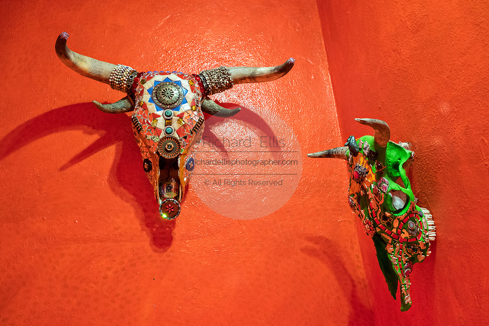 Multi layered assemblage cattle skulls on the wall at the Chapel of Jimmy Ray by American artist Anado McLauchlin in his compound Casa las Ranas September 28, 2017 in La Cieneguita, Mexico.