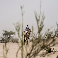 Baga Sola, Lake region, Chad.<br /> <br /> <br /> In this desert region, very silted and devoid of paved road, the camel remains one of the best means of transport.<br /> <br /> <br /> Sylvain Cherkaoui/Cosmos for MSF