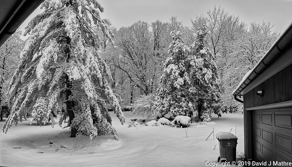 Front Yard View. Composite of five image taken with a Leica CL camera and 23 mm f/2 lens (ISO 100, 23 mm, f/3.2, 1/250 sec). Raw images processed with Capture One Pro, AutoPano Giga Pro, and Silver Efex Pro.