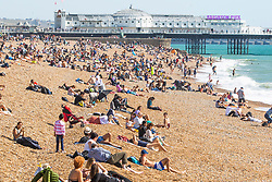 © Licensed to London News Pictures. 21/09/2019. Brighton, UK. Members of the public take advantage of the last few days of sunshine taking to the beach in Brighton and Hove. Photo credit: Hugo Michiels/LNP