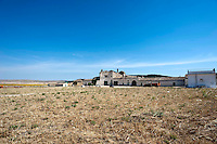 In giro per la campagna murgese, tra Poggiorsini,Gravina ed Altamura, c'è la masseria Pantano