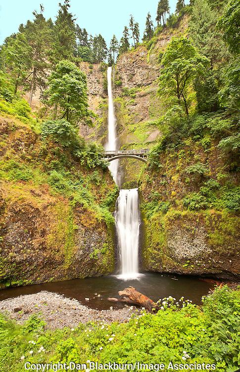 Multnomah Falls Oregon in Full Flow