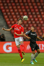 July 23, 2018 - Na - Zurique, 07/21/2018 - Sport Lisboa e Benfica faced Sevillha FC in the Letzigrund Stadium in preparation match of 201872019 season. Conti  (Credit Image: © Atlantico Press via ZUMA Wire)