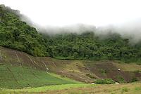 La comunidad de Las Nubes se ubica en el corregimiento de Cerro Punta, distrito de Bugaba, Provincia de Chiriquí. Panamá, 10 de julio de 2012. (Damian Hernandez/Istmophoto)