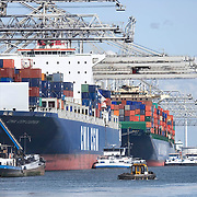 Nederland Zuid-Holland Rotterdam  27-08-2009 20090827 Foto: David Rozing .Serie over logistieke sector.ECT Delta terminal in de haven van Rotterdam. .Reusachtige zeeschepen aan de kade om gelost en geladen te worden, op de voorgrond een bootje dat helpt bij afmeren, naast de zeeschapen liggen binnenvaartschepen afgemeerd die een deel van de vracht verder over het water vervoeren. .ECT,European Container Terminals, at the Port of Rotterdam. Europe's biggest and most advanced container terminal operator, handling close to three- quarters of all containers passing through the Port of Rotterdam. ECT is a member of the Hutchison Port Holdings group (HPH), the world's biggest container stevedore with terminals on every Continent. ECT Delta Terminal offers an unequalled water depth. , vervoer, vervoer per schip, vervoerder, Vervoerders, vrachtschepen, vrachtschip, water, waterhuishouding, welvaart, wereldhandel, zeehaven, zeehavens, zeeschepen, zeeschip, zeevaart.Holland, The Netherlands, dutch, Pays Bas, Europe .Foto: David Rozing