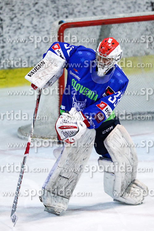 Robert Kristan of Slovenia during friendly ice hockey match between Slovenia and Croatia, on April 12, 2016 in Ledena dvorana, Bled, Slovenia. Photo By Matic Klansek Velej / Sportida