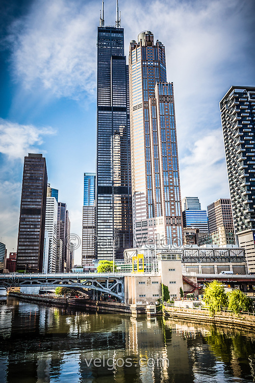 Picture of Chicago buildings with Willis Tower (Sears Tower) in the downtown loop neighborhood of Chicago. Photo is vertical, high resolution and was taken in 2012.