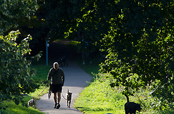 ©Licensed to London News Pictures 29/08/2019.<br /> Sidcup ,UK. Dog walker, Early morning sunny weather at Footscray Meadows in Sidcup, South East London.Photo credit: Grant Falvey/LNP