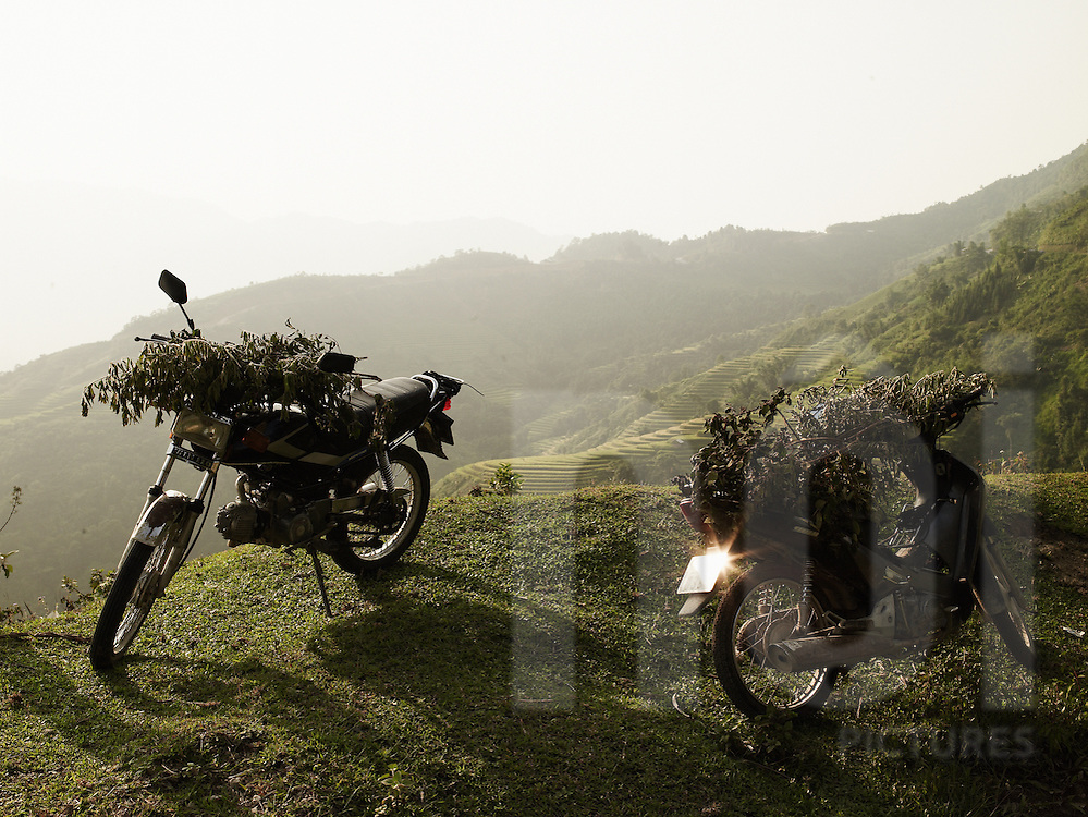 Two motorbikes are parked on the grass along the road.They are loaded with cut branches. Mountainous landscape in background. Ha Giang province, Vietnam, Asia