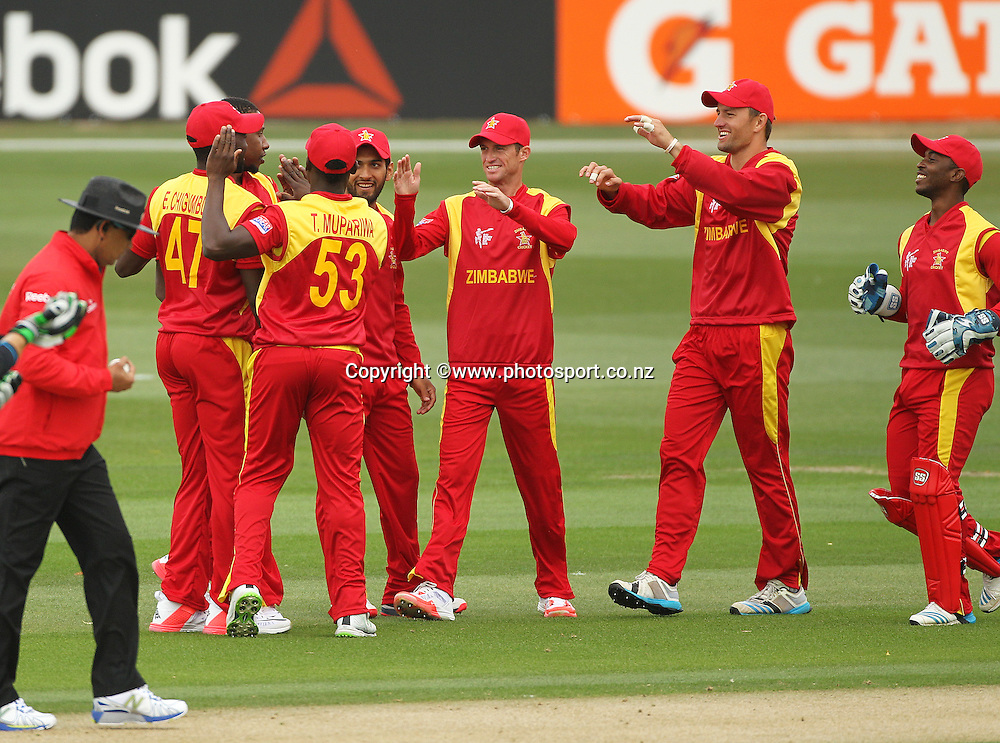 Zimbabwe team members celebrate a wicket during the ICC Cricket World Cup warm up game between the Black Caps v Zimbabwe at Bert Sutcjliffe Oval, Lincoln, Christchurch. 9 February 2015 Photo: Joseph Johnson / www.photosport.co.nz
