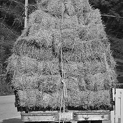 One more bale of hay and this truck won't be able to move.