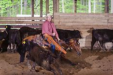 004 5,000 Novice Horse