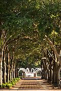 Waterfront park and fountain in the historic district of Charleston, SC.