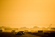 March 16, 2013: 61st Mobil 1 12 Hours of Sebring. 6 Klaus Graf, Lucas Luhr, Romain Dumas, Muscle Milk Pickett Racing