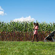 September 9, 2012 - Queens, NY : The Queens County Farm Museum, located Little Neck Parkway, boasts an assortment of livestock, as well as bees, a vineyard, vegetable gardens, an orchard, and, seasonally, a corn maze. Pictured here, Marsha Austin carries her 14-month-old daughter Valerie Eusebi ahead of grandmother Valerie Austin, past the Queens County Farm Museum's corn field. CREDIT: Karsten Moran for The New York Times