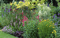 well planted border with alliums and penstemon