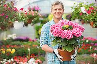 Portrait of happy gardener holding flower pot in greenhouse