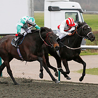 Abigails Angel and Mark Coumbe winning the 4.25 race