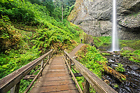 The trail to Latourell Falls is a short and scenic walk in the Columbia River Gorge.