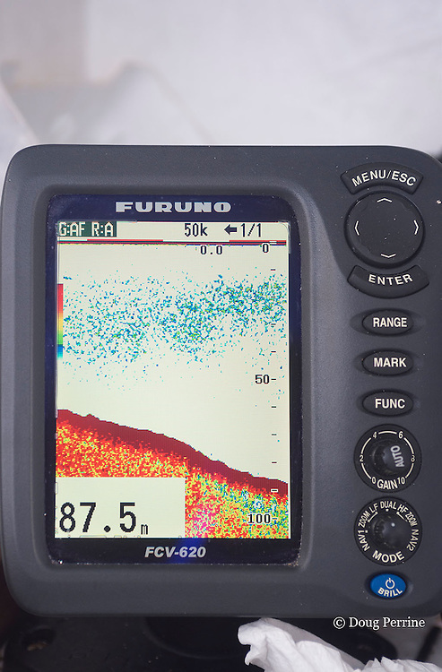 depth sounder on Reel Addiction, showing a school of bait fish on west side of Vava'u, Kingdom of Tonga, South Pacific