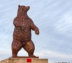 Dunbar, East Lothian, Scotland, United Kingdom, 19 November 2019. Andy Scott statue unveiling: Unveiling today of a 5m high bear sculpture to celebrate the life of naturalist John Muir. The sculpture by the Kelpies creator Andy Scott marks Dunbar-born John Muir who played a key role in the development of national parks in the US.<br /> Sally Anderson | EdinburghElitemedia.co.uk