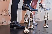 """Portrait d'Ariane Moffatt - Prix de l'ADISQ 2015 : Interprète féminine de l'année et Album de l'année – Pop pour """" 22h22 """" et Jean Leloup : Interprète masculin de l'année ainsi que Auteur ou compositeur de l'année et Chanson de l'année – choix du public pour """" Paradis City """". En direct des remises de prix de l'ADISQ avec Francophonie Express   à  Place des Arts / Montreal / Canada / 2015-11-08, Photo © Marc Gibert / adecom.ca"""