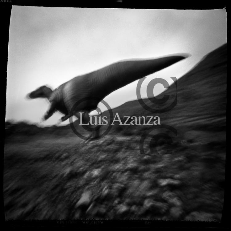 Found Landscape,  Icnitas dinosaur footprints in Enciso La rioja Spain . Foto Luis Azanza