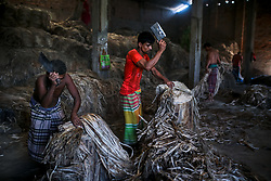 November 1, 2018 - Dhaka, Bangladesh - Employees are working in a jute-processing mill in Narayanganj Bangladesh on November 1, 2018. (Credit Image: © Kazi Salahuddin Razu/NurPhoto via ZUMA Press)