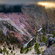 The sun is hidden behind layers of fog in Yellowstone National Park, Wyoming