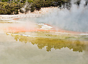 Blue, yellow, and orange Champagne Pool steams at Wai-O-Tapu Thermal Wonderland, North Island, New Zealand
