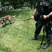 A US Secret Service security dog walks on the North Lawn of the White House Tuesday, May 17, 2005, in Washington, DC...Photo by Khue Bui