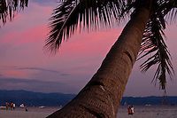 Palm tree against a pink sunset sky on White Sand Beach, Boracay, Philippines.
