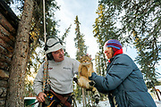 Owner and cat are reunited after an arborist scaled an 80-foot spruce tree to get the animal down.