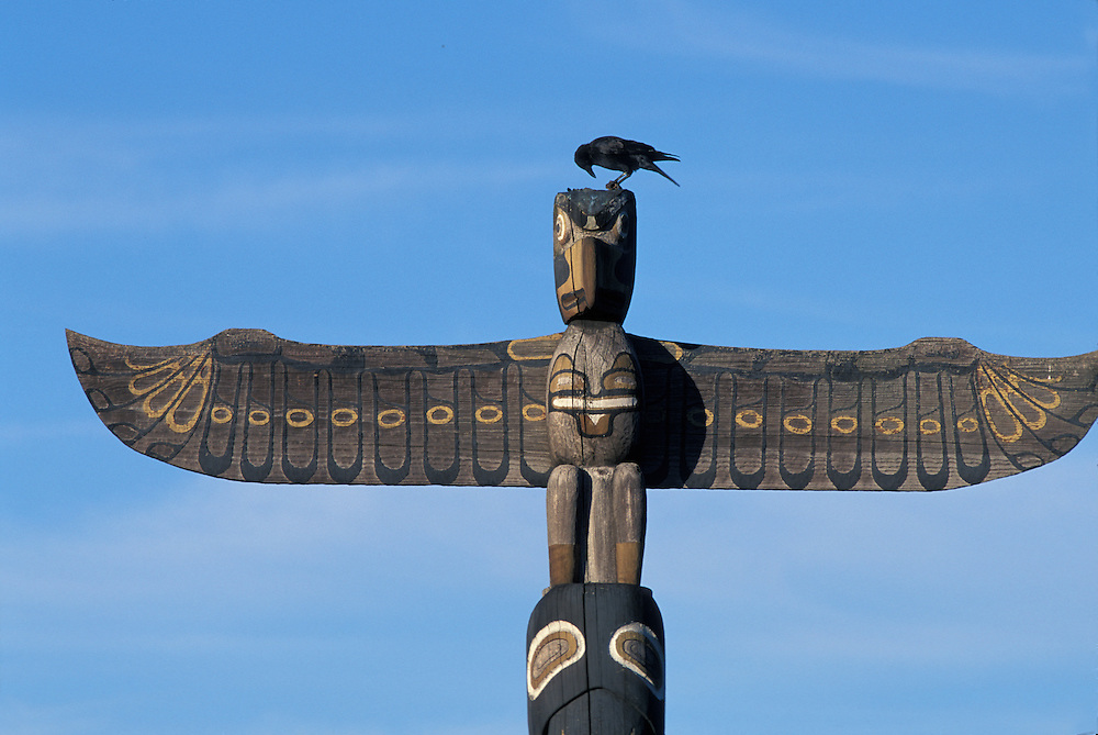 USA, Washington, Seattle, Crow sits atop totem pole in West Seattle Park lit by setting summer sun