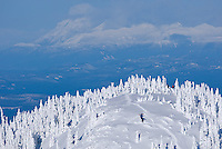 """Snowboarders hiking for fresh powder runs near the """"Outback"""" area of Mount Washington.  Comox Valley, Vancouver Island, British Columbia, Canada."""