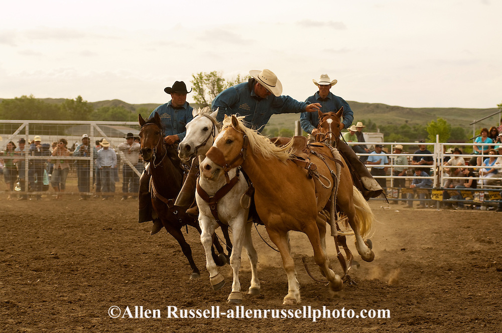 Pickup men Jay Shaw, Kyle Shaw and Lynn Ashley, Miles City Bucking Horse Sale, Montana, <br /> MODEL RELEASED