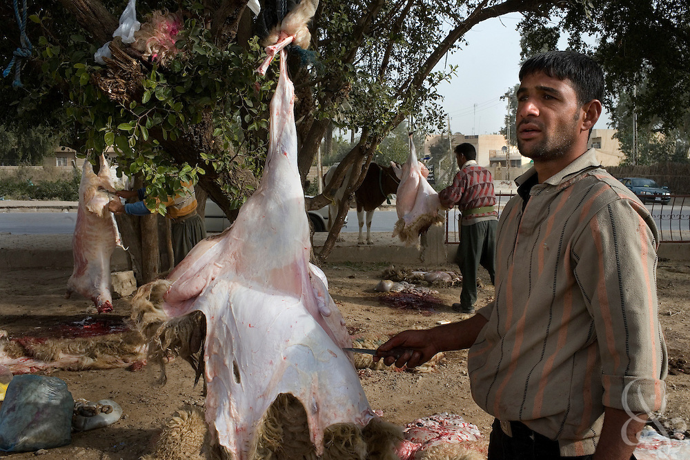 Iraqi butchers slaughter sheep for Eid al-Adha December 12, 2007 in the Sadr City district of Baghdad. Eid al-Adha (Eid of Sacrifice) is a a religious festival practiced by Muslims worldwide to commemorate the willingness of Abraham to sacrifice his son on the command of God.